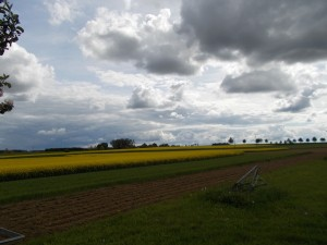 alpirsbach fields